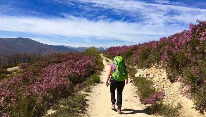 Camino de Santiago, Spain