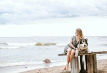 Your Pet Dog To Travel Abroad With You